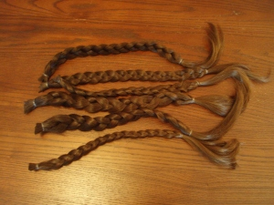 Locks of Love (hair in braids for donation)